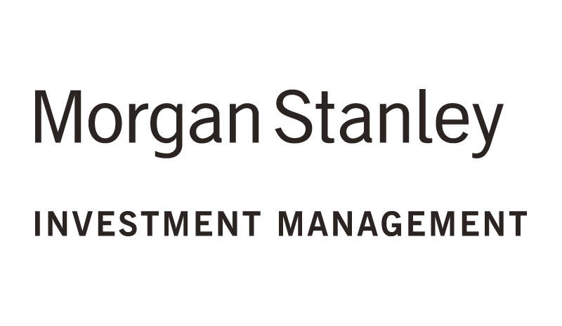morgan stanley's return on system noninvestment A big morgan stanley report the idea is that as institutional investors seek out increasingly higher levels of risk/return  get business insider.